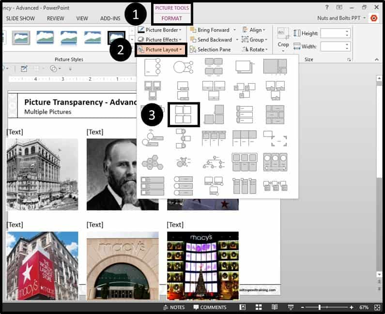 PowerPoint Picture Transparency Multiple Step #2 - Use the Picture Layout Command