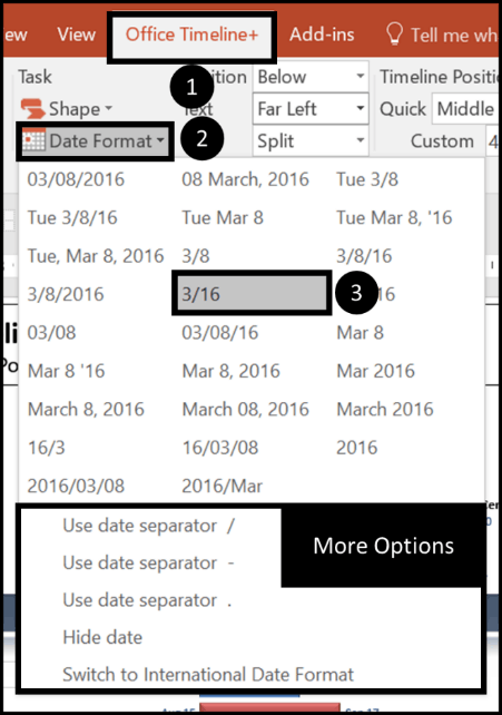 Gantt Chart Tricks 1.3 - date formatting dialog box