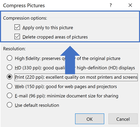The Compress Pictures command Compression Options