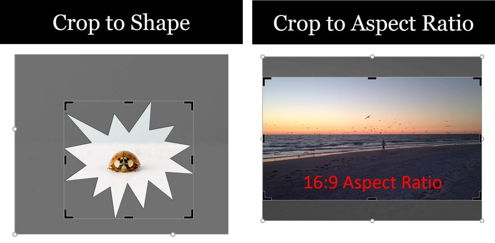 Comparison of cropping to a shape versus cropping to an aspect ratio