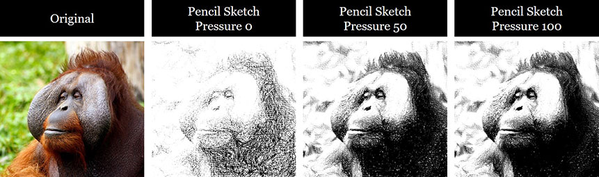 Example of a photo turned into a black and white pencil sketch drawing with different pressures added to it in PowerPoint