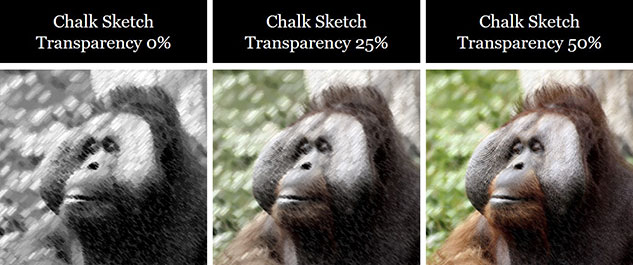 Examples of different transparency effects applied to the chalk sketch effect