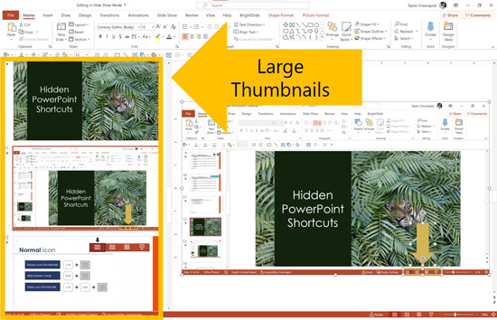 Example of large thumbnails in Microsoft PowerPoint